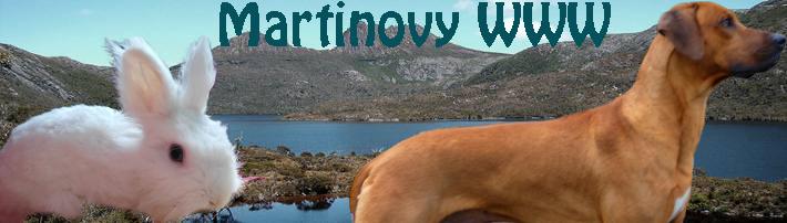 Martinovy WWW